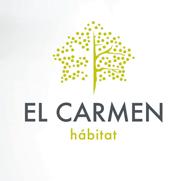 img_idex_elcarmen